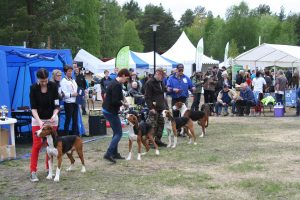 crowded-dog-show-and-pet-owners